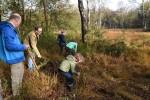 Gedeputeerde Johan van den Hout en directeur Brabants Landschap Jan Baan aan de slag op de heide samen met leden van Scouting Hilvarenbeek en VNM-Hilvarenbeek Jeugd (foto: Hannie Houben)