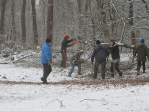 Leden van de Natuurwerkgroep zijn ook in de winter actief