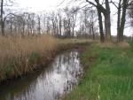 Het Spruitenstroompje en de Roodloop doorkruisen De Gooren.
